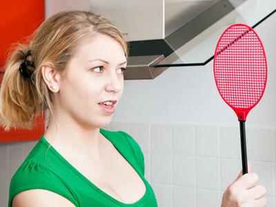 Как избавиться от мошек: в квартире на кухне и доме