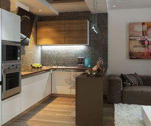 дизайн кухни-гостиной 15 кв.м с диваном фото